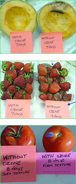 green refrigerator machine before and after strawberries