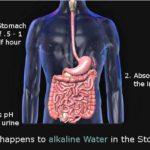 alkaline water stomach acid