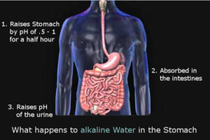 alkaline water stomach acid