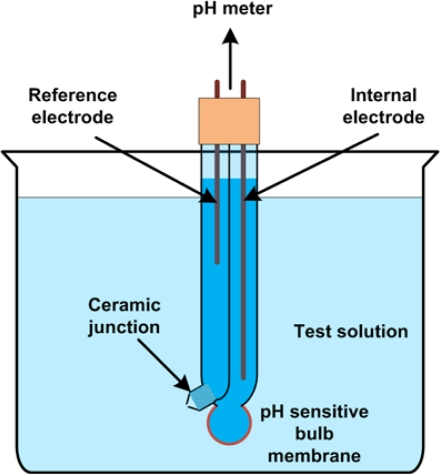 pH Meter Principle