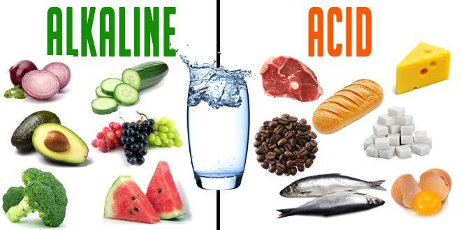 List Of Basic Alkaline Foods