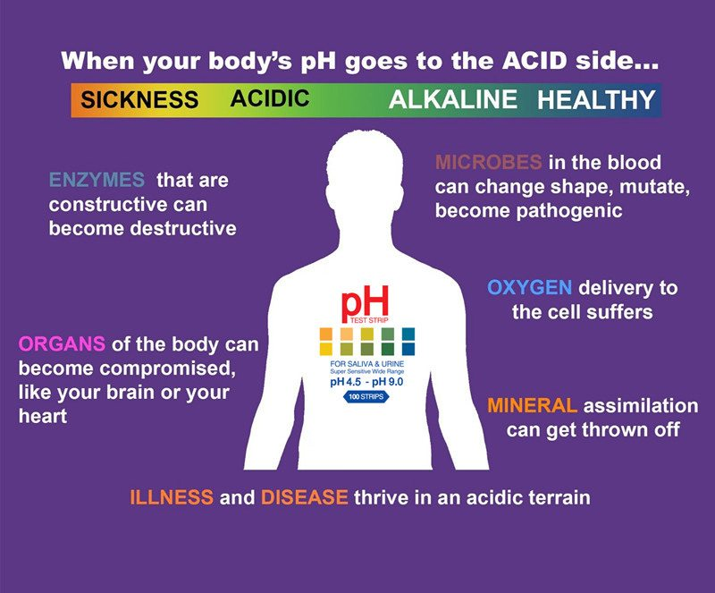 acid and alkaline body ph chart