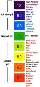 food_ph_scale-livingpaleo-com